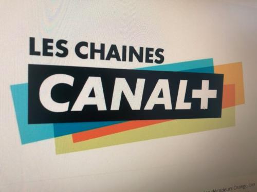 Capture d'écran du logo de Canal + - Collection SNJ